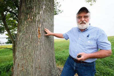 Tom Worthley showing where the damage to the tree is