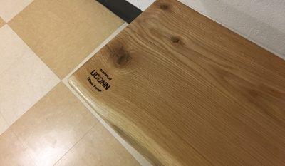 UConn forest logo on a bench