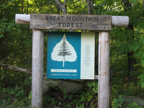 Great Mountain Forest sign