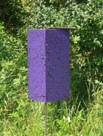 purple emerald ash borer trap